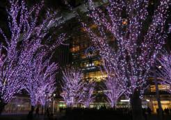 博多駅・桜のイルミネーション