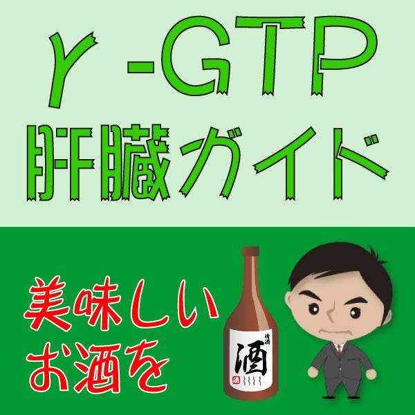 γ-GTP・肝臓ガイド